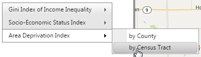 gini index